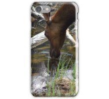 Elk Drinking iPhone Case/Skin