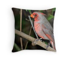 Pyrrhuloxia Throw Pillow