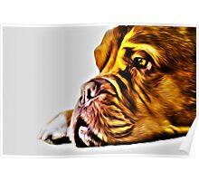 Dog Art Poster