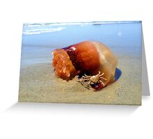 Jellyfish Crab Hitchhiker  Greeting Card