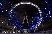 London Eye @ Night by est1979