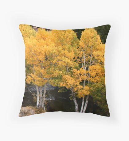 Aspen Creek Throw Pillow