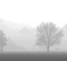 Autumn mist by da-phil