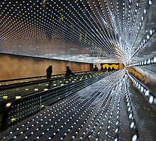 """""""Multiverse, 2008"""" by Leo Villareal. National Gallery of Art. Washington DC by jwhimages"""