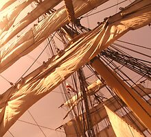 Foremast, on 'James Craig', Sydney Harbour by leighroy
