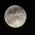 Super Moon - June 23, 2013  by Lorelle Gromus