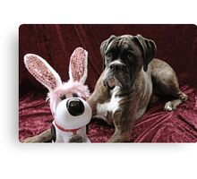 You Can't Fool Me... It's Not The Easter Bunny Canvas Print