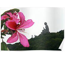 Buda - Nong Peng, Hong Kong 2010 Poster