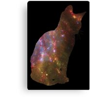 Kitten Space Canvas Print