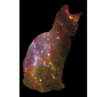Kitten Space Photographic Print