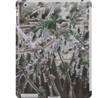 Nature's Decorations iPad Case/Skin