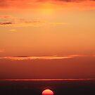 Apocalypse Please by Sara Johnson