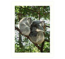 Koala see Koala do Art Print