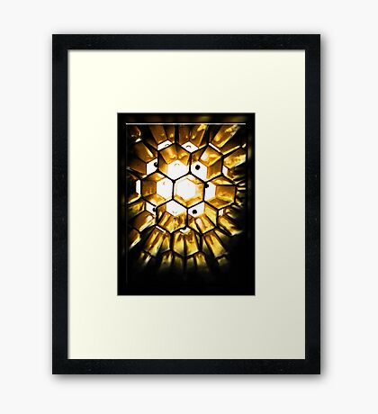 ©DA Some Abstract Cells IIA. Framed Print