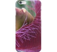 Maroon Fluff iPhone Case/Skin
