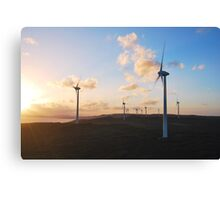 Sunset over the Albany Wind Farm Canvas Print