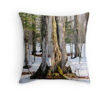 Drip,Drip,Maple Water Throw Pillow