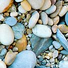 Beach Rocks 12 by Janice E. Sheen