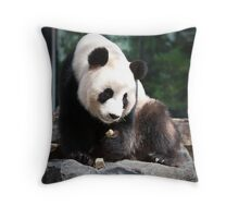 Adelaide Zoo's Wang Wang Throw Pillow