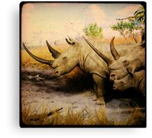 fauXafari II Canvas Print