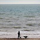 Seaside Walk by naffarts