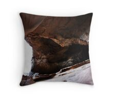 Erosion. Throw Pillow