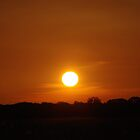 Orange Sunset by rom01