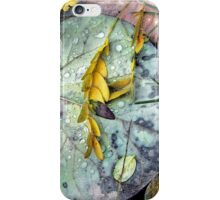 Nature's Paint Box iPhone Case/Skin
