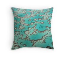 Great Barrier Reef from the air Throw Pillow