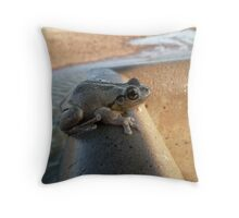 Frog on Water Trough - Oxley Station Throw Pillow