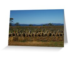 Old convict built fence in Tasmania Greeting Card