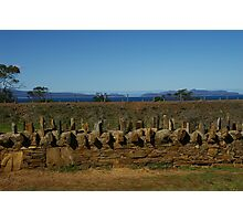 Old convict built fence in Tasmania Photographic Print