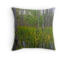 Signs of Spring at the creek Throw Pillow