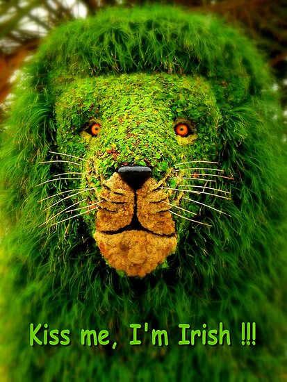 Kiss Me, I'm Irish !!! by artisandelimage