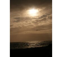 Silver Sun and Seagull Photographic Print