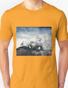 Seagulls on the rocks Unisex T-Shirt