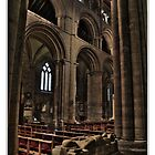 Selby Abbey Arches by Alikat72