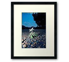 Obstacles... Framed Print