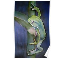 Green Dart Frog Watercolor Painting Poster