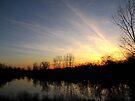 Siegert Lake Sunset by Veronica Schultz