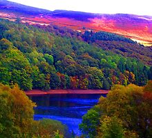 The Hills Are Alight, The Peak District by Amy  Lanza