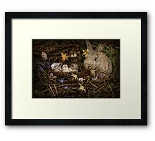 Mrs. Cottontail And The Kids Framed Print