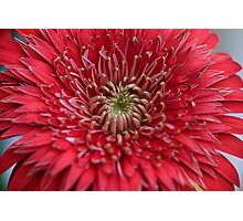 Red Star Photographic Print