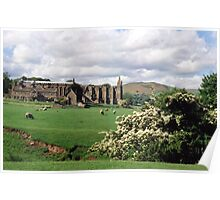 At Bolton Abbey. Poster