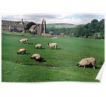 Bolton Abbey Ruins. Poster