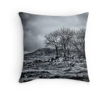 Hiding caverns in plain site Throw Pillow
