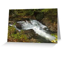 Laurel Creek Cascade Greeting Card