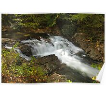 Laurel Creek Cascade Poster