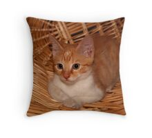 kitten in a basket Throw Pillow