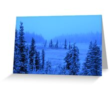Spruce Trees in Ice Fog Greeting Card